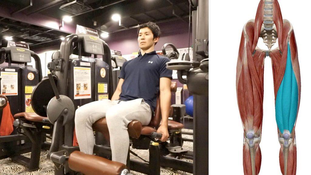 膝周りの筋肉を鍛えるレッグエクステンションマシンStart