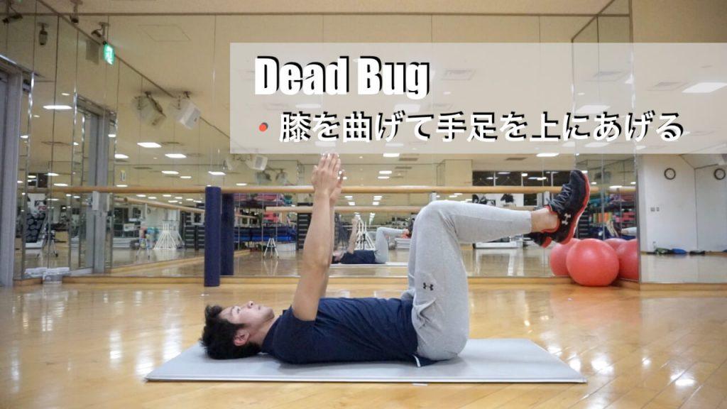 早朝のジムトレーニングでやっておきたいデッドバグ(start)