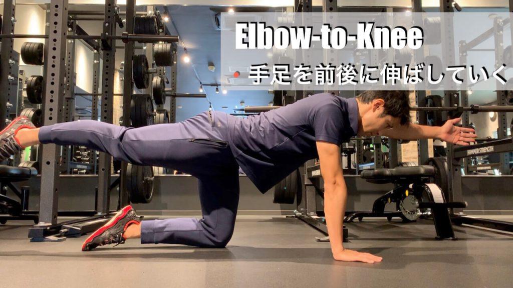 椎間板ヘルニアに負けない腰を作る4point-ダイアゴナルエルボーニー03