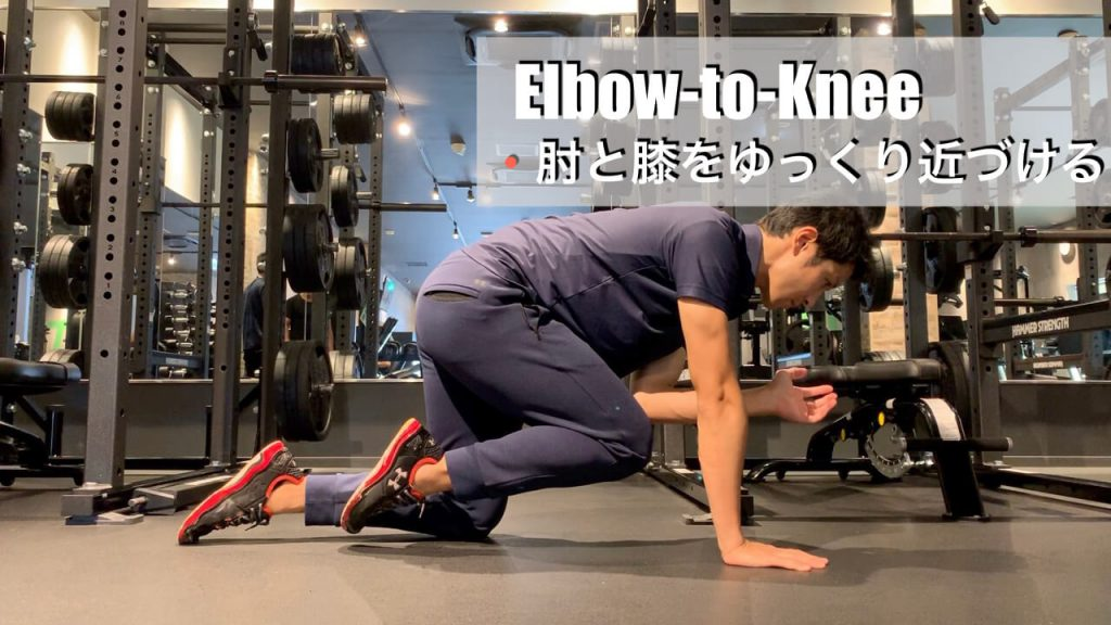 椎間板ヘルニアに負けない腰を作る4point-ダイアゴナルエルボーニー02