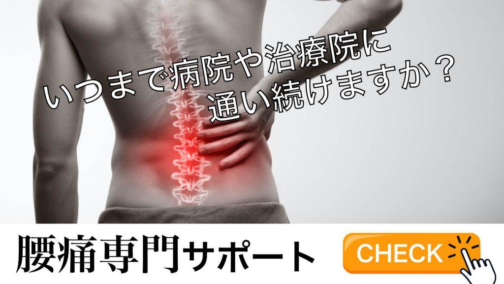 腰痛専門のパーソナルトレーニングサービス概要